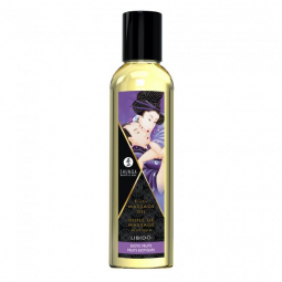KIT SHUNGA FRUITY KISSES COLLECTION