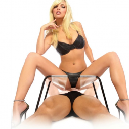 FETISH FANTASY SERIES THE INCREDIBLE SEX STOOL